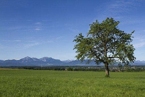 Salzburg Country, Flachgau