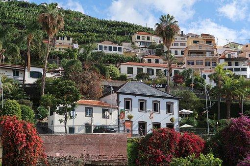 Madeira, Houses, Hill