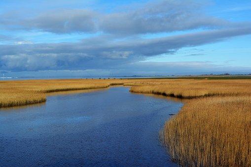 Dollart, Ems, Landscape, Holland, Nature, Water