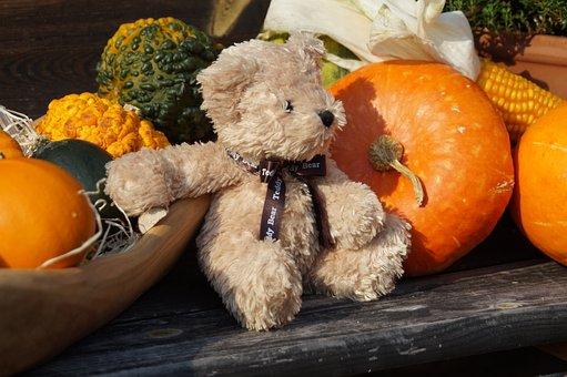 Teddy, Toys, Furry Teddy Bear, Teddy Bear, Cute, Sweet