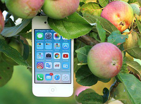 Phone, Iphone, Gadget, Apple, Apple Tree, Call, Message