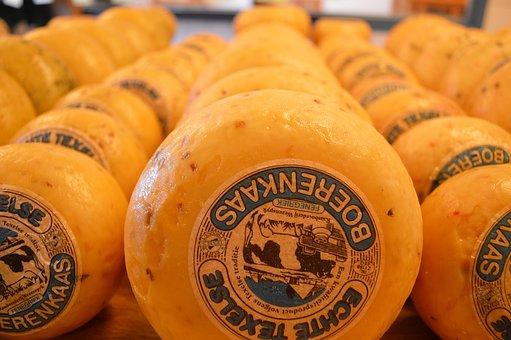 Cheese, Texel, Farmer's Cheese, Around, Shop, Yellow