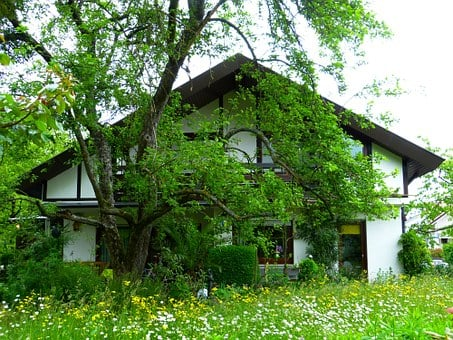 House, Garden, Meadow, Apple Tree, Away, Green, Home