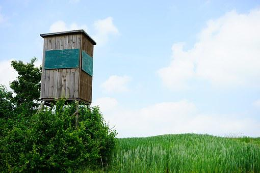 Hunter Was, Hunter Seat, Perch, Hunting, Wooden Tower