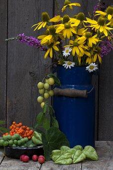 Still Life, Milk Can, Pot, Fruit, Yellow Coneflower