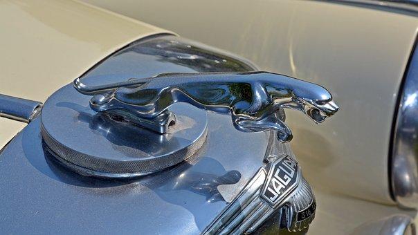 Oldtimer, Jaguar, Cool Figure, Auto, Old, Classic, Pkw