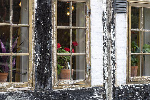 Old Windows, Timber Frame, Potted Plants, Decay