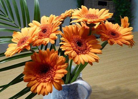 Bouquet, Gerbera, Cut Flowers, Flower Garden