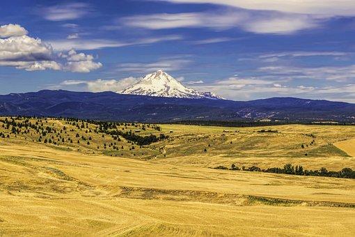 Mt, Hood, Oregon, Scenic, Landscape, Usa, Northwest