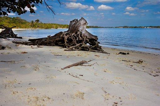 Beach, Florida, Florida Beach, Ocean, Vacation, Sand