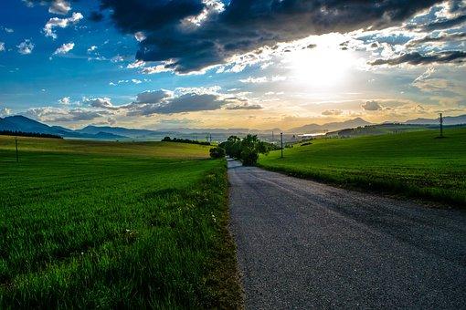 Sun, Path, Meadow, Grass, Tree, Heaven, Sky, Clouds