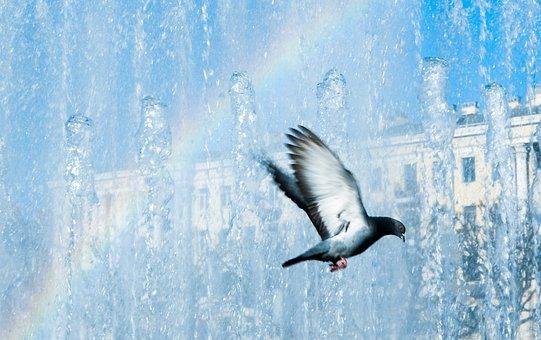 Fountain, Rainbow, Sky, The Colors Of The Rainbow