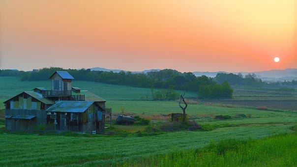 Ranch, Safe, Palm Island, Spring, Sunrise, Farm, Hill
