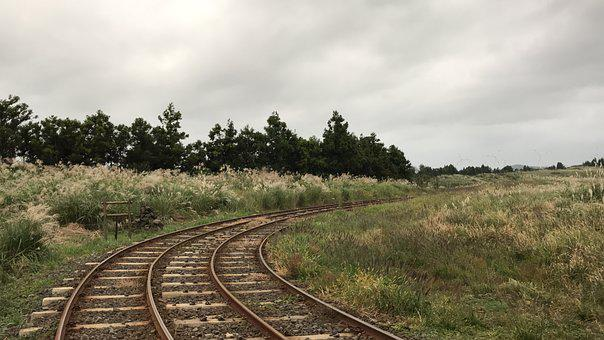 The Railroad Line, Reed, Wind, Overcast, Travel, Break