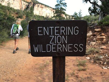Zion, Wilderness, Park, Nature, Travel, Usa, Scenic
