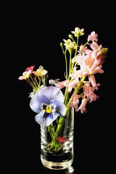 Spring, Flowers, Vase, Glass, Early Bloomer, Pansy