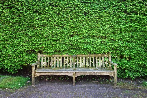 Wooden Bench, Bench, Seat, Sitting, Resting, Furniture