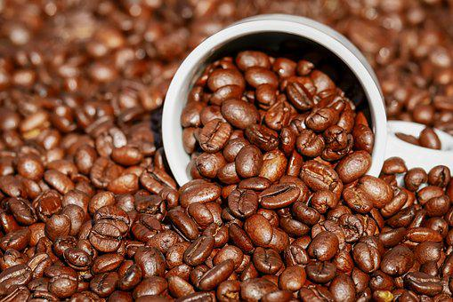 Coffee Beans, Coffee Cup, Cup, Coffee, Benefit From