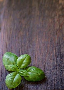 Basil, Leaf, Herb, Food, Fresh, Green, Ingredient