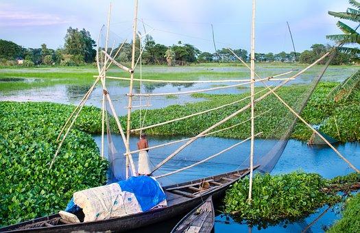 Fisherman, Fishing, Old, Man, Village, River, Side