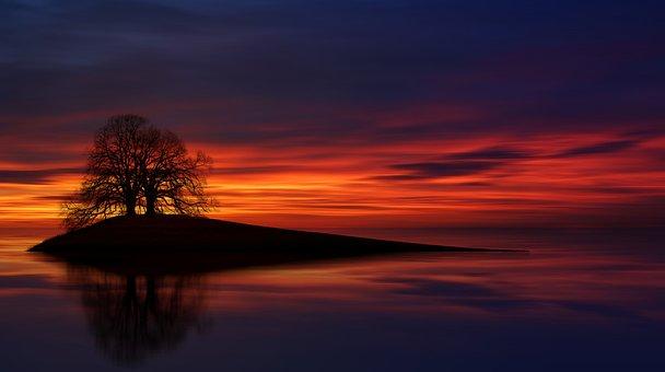 Evening Sky, Lake, Sea, Island, Silhouette, Tree