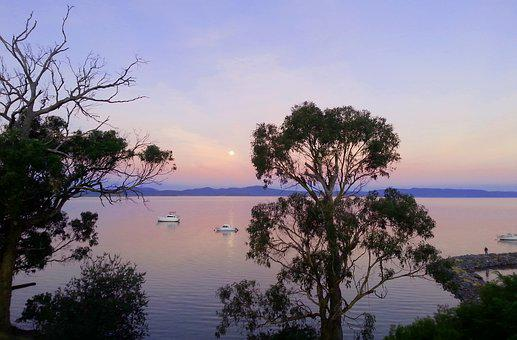 Australia, Gumtrees, Boats, Water, Sunset, Sky