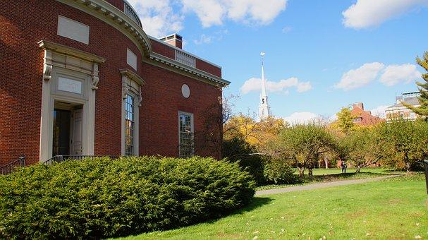 Harvard, Library, Campus, Cambridge, University