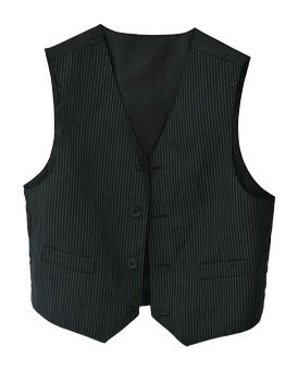 Vest, Waistcoat, Pinstripe, Clothing, Clothes, Fabric