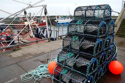 Creels, Harbour, Port, Fishing, Seafood, Harbor, Marine