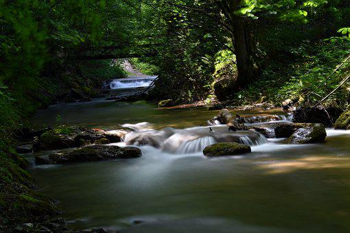 Long Exposure, Bach, Forest, Water, Nature, River