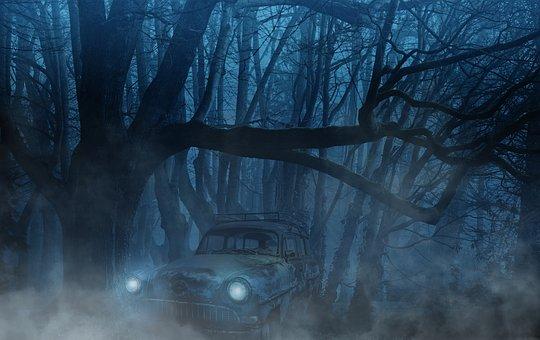 Auto, Forest, Fog, Trees, Aesthetic, Weird, Mystical