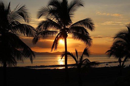 Sunset, Orange, Yellow, Scene, Scenic, Shore, Night