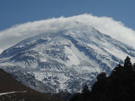 Mountain, Trees, Pine, Nature, Fog, Winter
