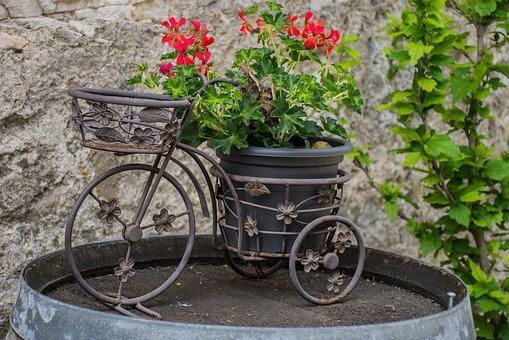 Bicycle, Flowers, Barrel, Trim, Wheels, Vintage, Old