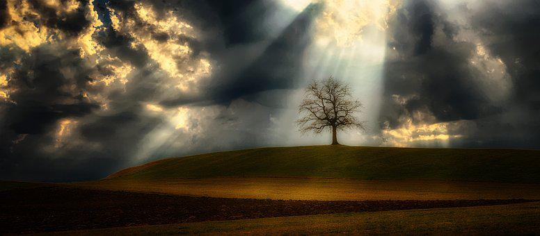 Light Beam, Clouds, Tree, Hill, Mood, Sky, Light