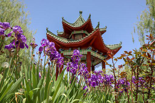 Chinese Building, Flowers, Garden, Architecture