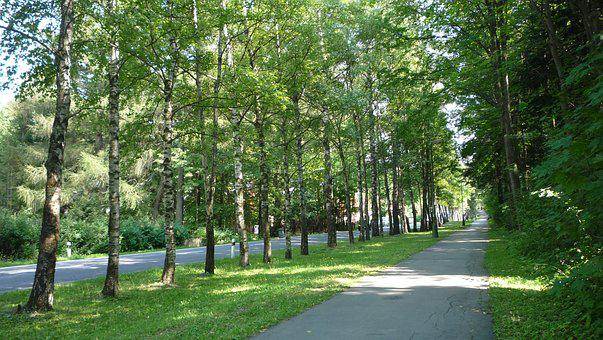 Slovakia, Park, Landscape, Nature, Tourism, Holiday