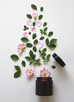 Natural Cosmetics, Pink, Rose, Cosmetics, Beauty