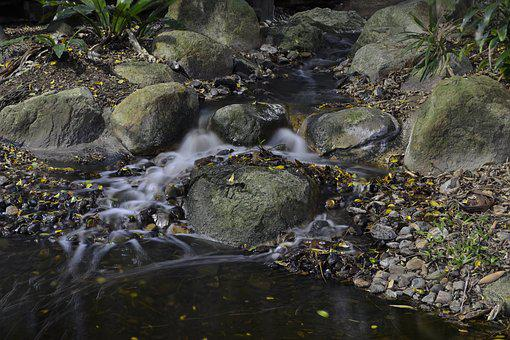 Water, Nature, Motion, Stream, Flow, Fresh, Cool, Cold