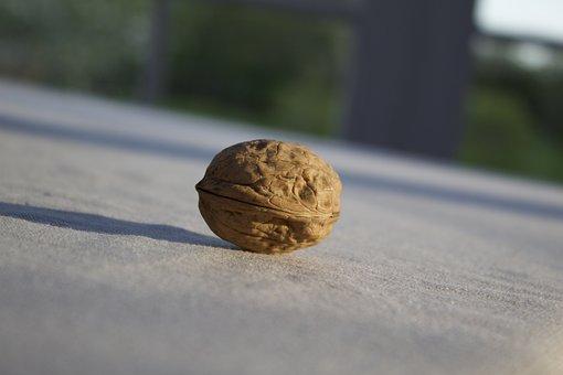 Walnut, Enjoyed, Walnuts, Taste, Dining, Structure
