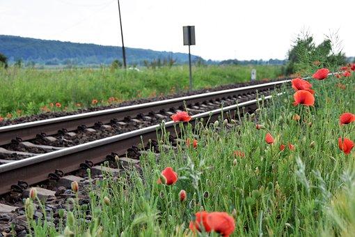 Red Poppy Near Railway, Romantic, Loving, Touching