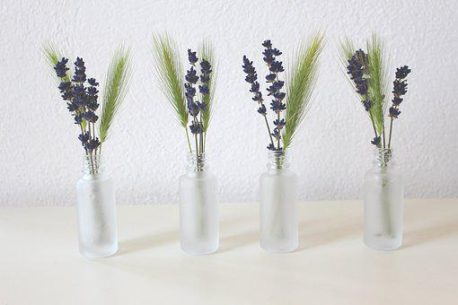 Lavender, Vase, Cereals, Spike, Decoration, Flowers