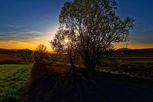 The Sky, West, Grass, Trip, Field, Meadow, Liptov