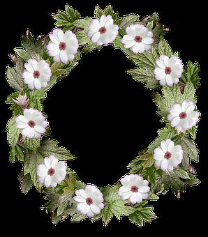 Wreath, Frame, Border, Flower, Leaf