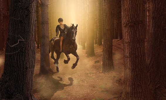 Forest, Horse, Girl, Light, Nature, Trees, Foal, Baio