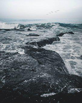 Beach, Sea, Ocean, Water, Sky, Sand, Tropical, Nature