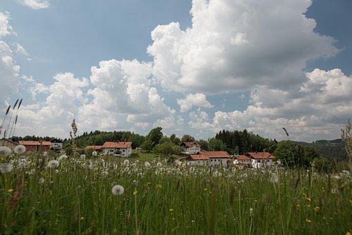 Neuschönau, Germany, Bavaria, Region, Landscape