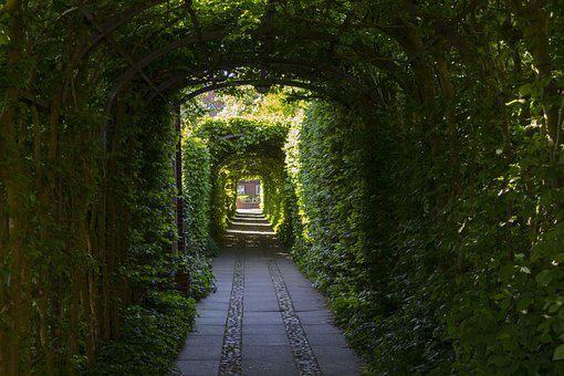 Passage, Goal, Input, Old, Romantic, Archway, Green
