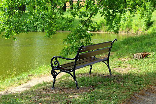 Bench, Park, Pond, Spring, Rest, Relaxation, Green