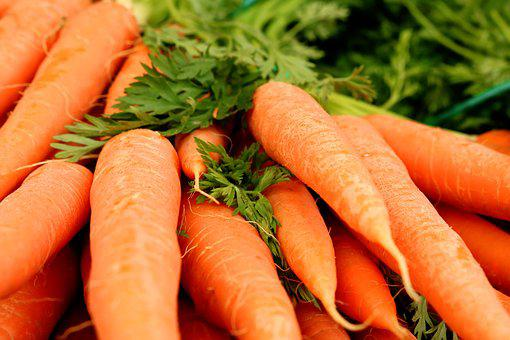 Carrots, Carrot, Federal Government, Vegetables